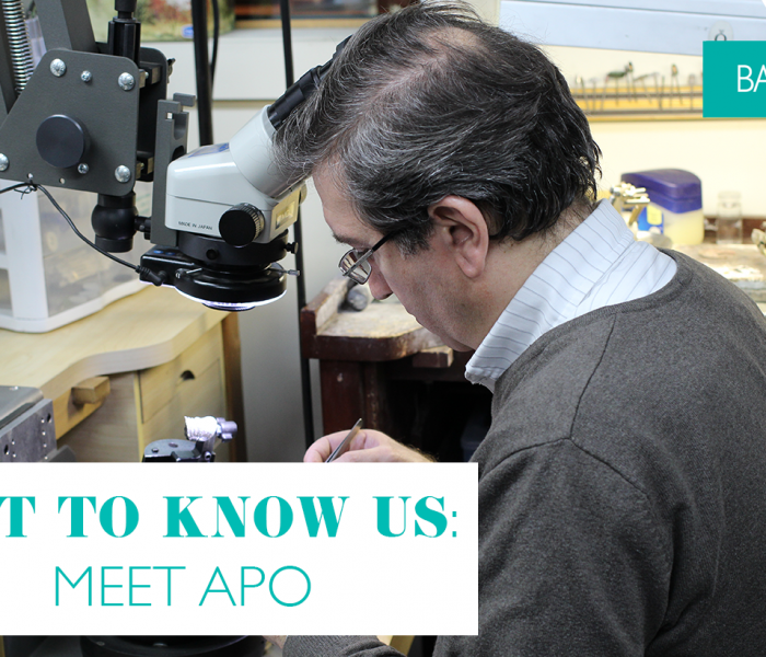 Get to know us: Meet Apo