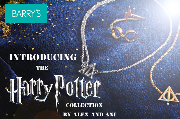 The Harry Potter Collection Has Arrived ONLINE at Barry's !